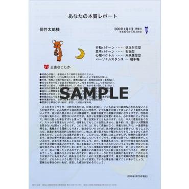 【限定価格】個性診断レポート 5点セット