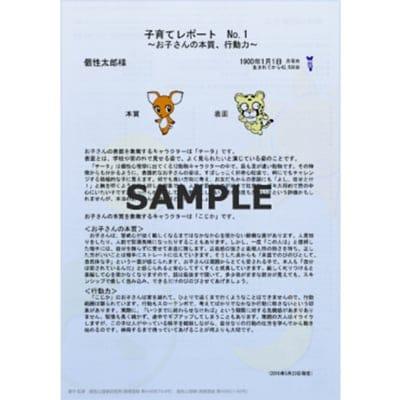 【限定価格】子育てレポート3枚セット