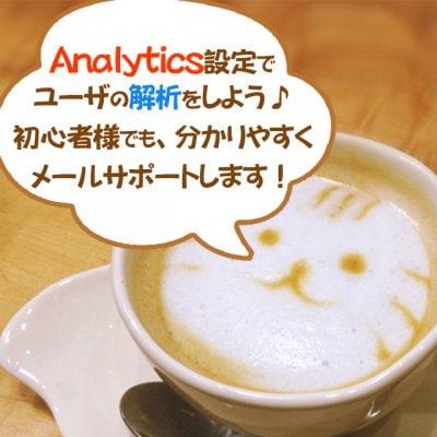 【代理店限定】安心!Analytics設定サポート(Googleアナリティクスで簡単ユーザ分析)