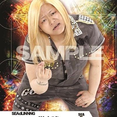 mevieプロレスカード「SEAdLINNNG 世志琥」(動画固定版)