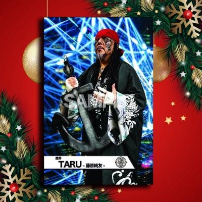 クリスマスドリームmevieプロレスカード「魔界 TARU-藤原純友-」(動画個別版)