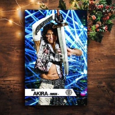 クリスマスドリームmevieプロレスカード「魔界 AKIRA-陶隆房-」(動画固定版)