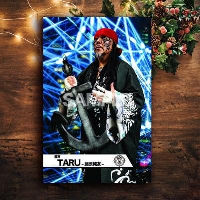 クリスマスドリームmevieプロレスカード「魔界 TARU-藤原純友-」(動画固定版)