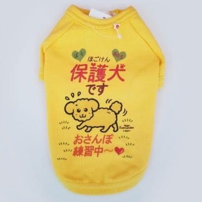 かなつ久美オリジナルカラーイラスト付き✦保護犬イエロー「おさんぽ練習中編」