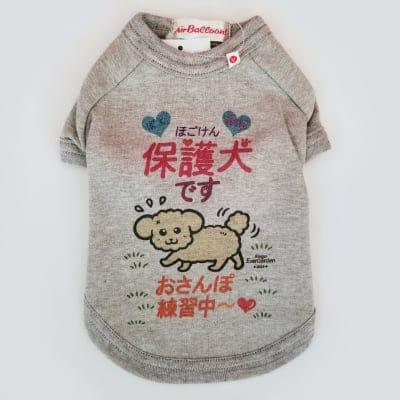 かなつ久美オリジナルカラーイラスト付き✦保護犬グレー「おさんぽ練習中編」