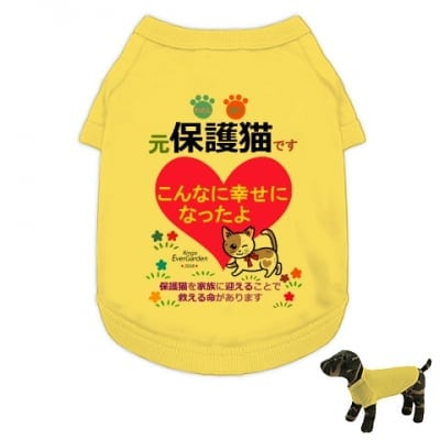 かなつ久美オリジナルカラーイラスト付き✦保護猫イエロー「こんなに幸せになったよ編」