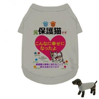 かなつ久美オリジナルカラーイラスト付き✦保護猫グレー「こんなに幸せになったよ編」