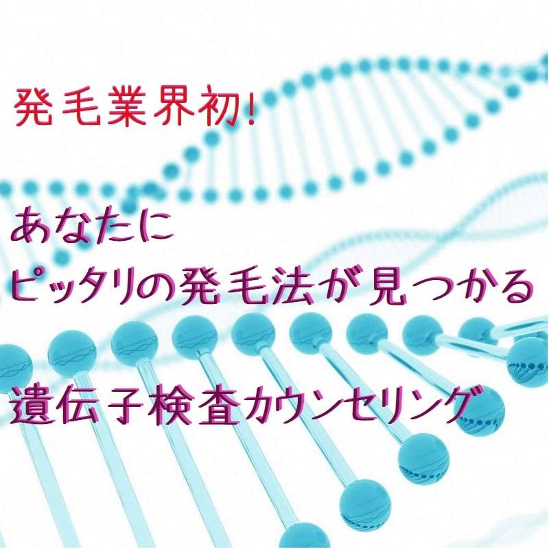 遺伝子検査カウンセリング(パーソナル発毛促進コース用ツール)のイメージその1