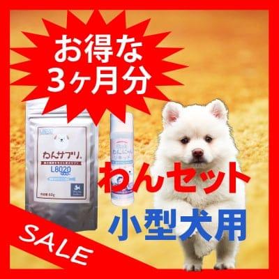 【お得な3ヶ月セット】わんセット 小型犬3ヶ月分 わんサプリ 60g入り 3個 +わんにゃんリキッド 40ml入り 3個【送料無料】