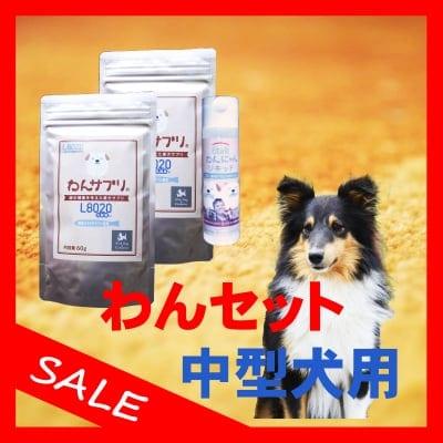 【歯周病の予防と対策】わんセット 中型犬1ヶ月分 わんサプリ 60g入り 2個 +わんにゃんリキッド 40ml入り 1個【送料無料】