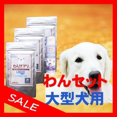 【歯周病の予防と対策】わんセット 大型犬1ヶ月分 わんサプリ 60g入り 3個 +わんにゃんリキッド 40ml入り 1個【送料無料】