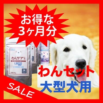 【お得な3ヶ月セット】わんセット 大型犬3ヶ月分 わんサプリ 60g入り 9個 +わんにゃんリキッド 40ml入り 3個【送料無料】