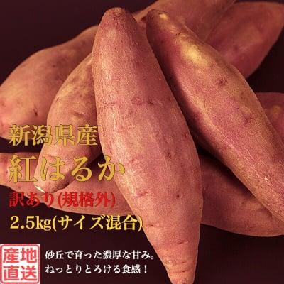 販売終了‼︎【訳ありB品(規格外)】新潟県産さつまいも2.5kg(S~L混合)
