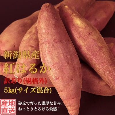 販売終了‼︎【訳ありB品(規格外)】新潟県産さつまいも5kg(S~L混合)