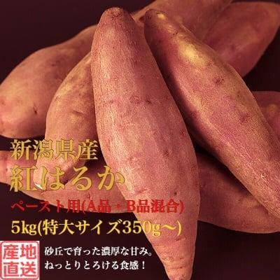 販売終了‼︎【ペースト用(秀品・B品混合)】新潟県産さつまいも5kg(特大サイズ)