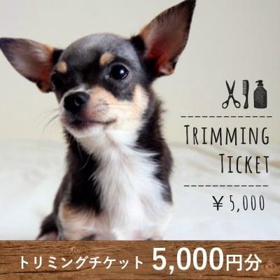 トリミングチケット 5,000円分