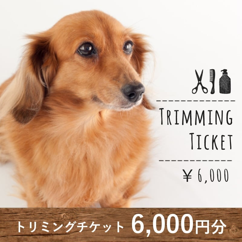 トリミングチケット6,000円分のイメージその1