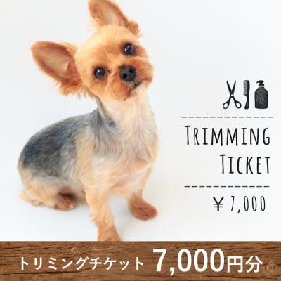 トリミングチケット 7,000円分