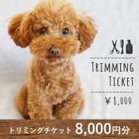 トリミングチケット 8,000円分