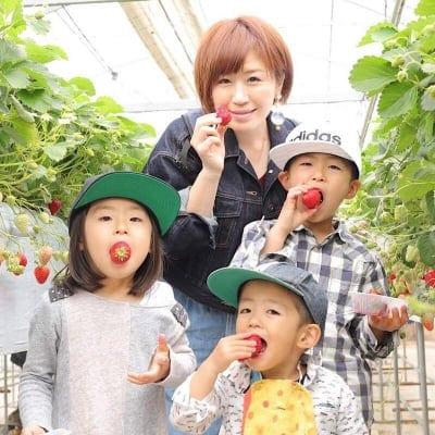 いちご摘み入園料小学生以上70歳未満