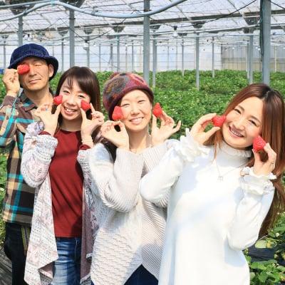 【3/1~3/8】いちご摘み入園料小学生以上70歳未満