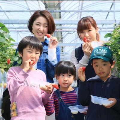【4/1~4/9】いちご摘み入園料小学生以上70歳未満