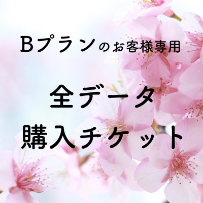 【桜撮影会専用】Bプランのお客様専用 全データ購入チケット