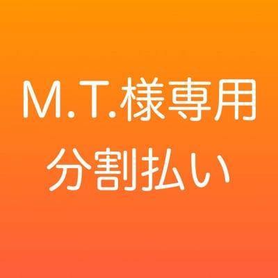 【M.T.様専用分割払い】アモーレヒーリング〜愛の癒し〜 120分x3回分