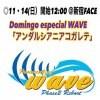 wave11月14日(日)新宿FACE大会【SRS席】