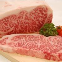 お食事チケット(お食事券)レストラン葡萄屋のディナーコースC 福井県 吟醸牛ステーキがメイン料理