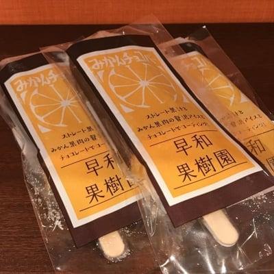 【冷凍】無添加早和果樹園のみかんチョコバー 70g×5本入り