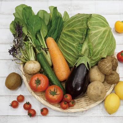 無化学農薬,有機肥料栽培!おかげさま農場未来農園 有機野菜セット(旬の野菜10〜15品目)