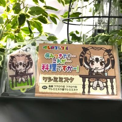 【H賞】Happyくじ けものフレンズ【プリントラバーチャーム&フレンズカード ワシミミズク】