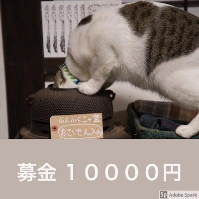 ☆ねこ募金10000円チケット☆