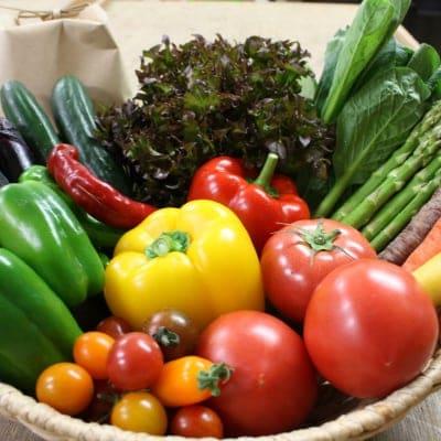 【お米と野菜セット】旬の産直お野菜アソート+農薬化学肥料不使用のお米1kg