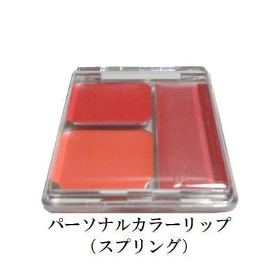 パーソナルカラーリップ(口紅)◆スプリング/サマー/オータム/ウィンター