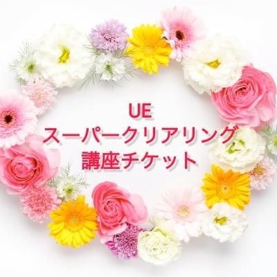 【平井綾香様ご紹介専用】2018年12月23日神戸開催 UEスーパークリアリング講座