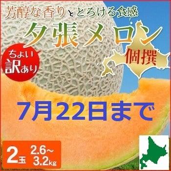 【7月22日まで】北海道直送!夕張メロン(個撰:訳あり)2玉 2.6〜3.2kg