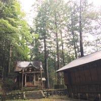 木頭の神様巡りガイドツアー*徳島県木頭から野草とオーガニック野菜のお取り寄せ「阿波・Blessing of kito」/自社栽培のオーガニック野菜やハーブと、自然の中から採集した薬草・野草を販売しています。