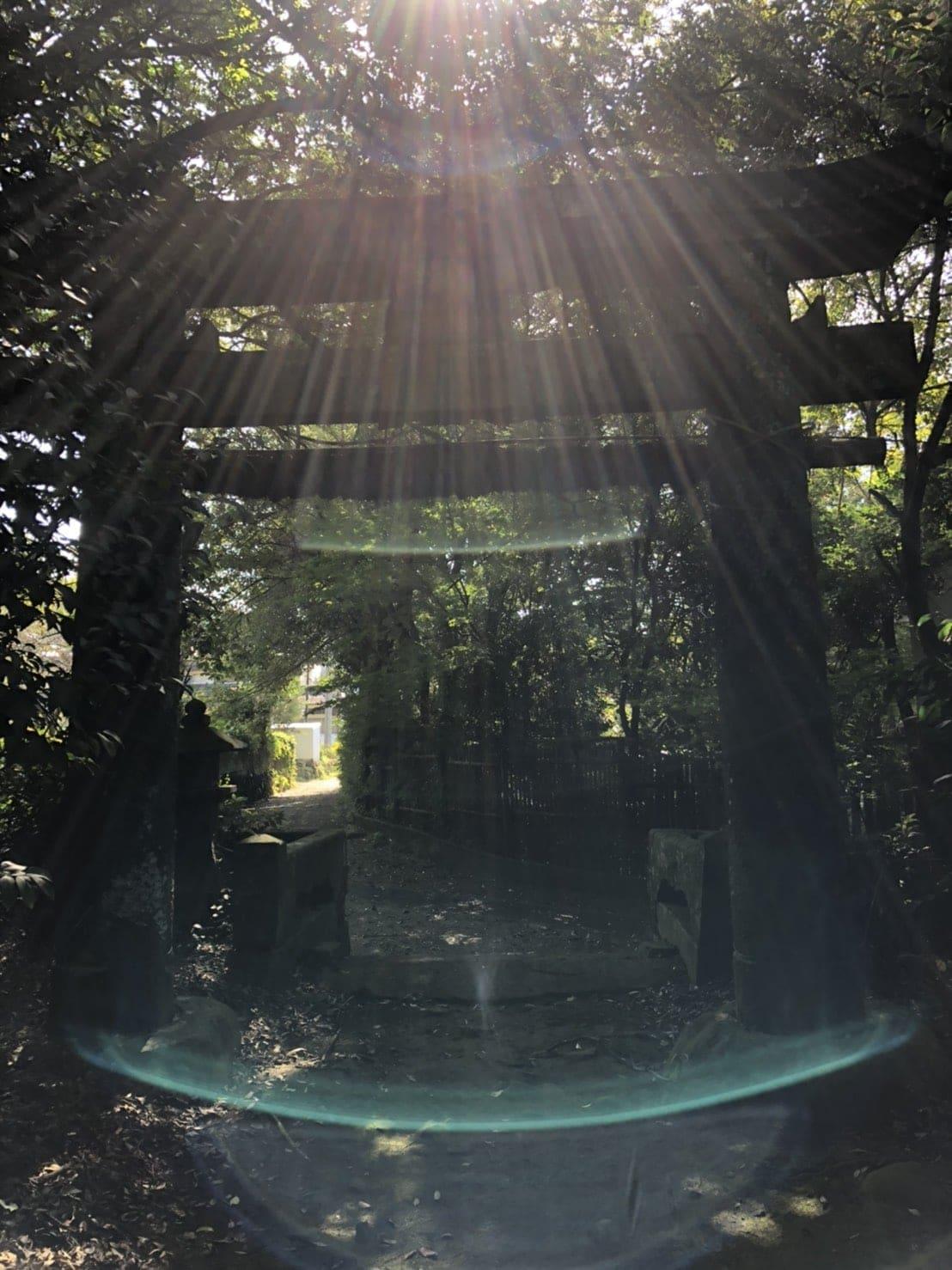 パラダイス四国の聖地ガイド二泊三日/シリウスブルー観光振興協会のお届けするスピリチュアルガイドツアーのイメージその4