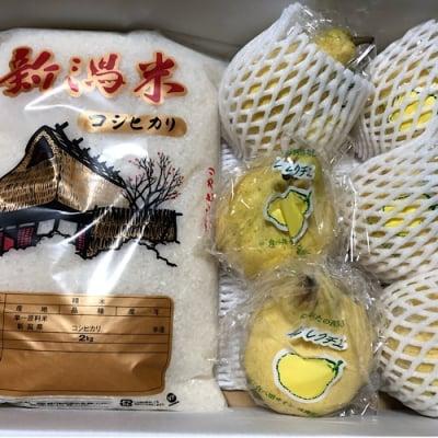 【販売開始!!】贈り物やお歳暮におすすめ!!ルレクチェ&コシヒカリの画像3