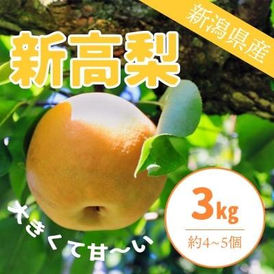 【販売終了!!】新高梨3Kg約4〜5個入り