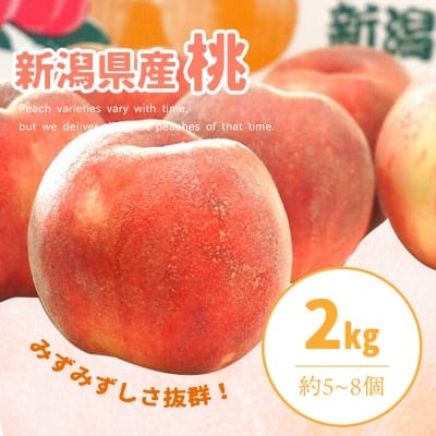 【販売終了!】新潟県産桃2Kg約5〜8個入り