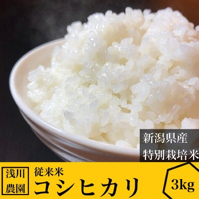 3kg令和2年産コシヒカリ【特別栽培米】【従来米】