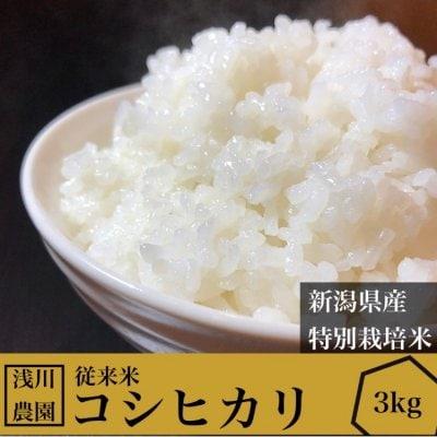 予約販売開始‼3kg令和3年産コシヒカリ【特別栽培米】【従来米】