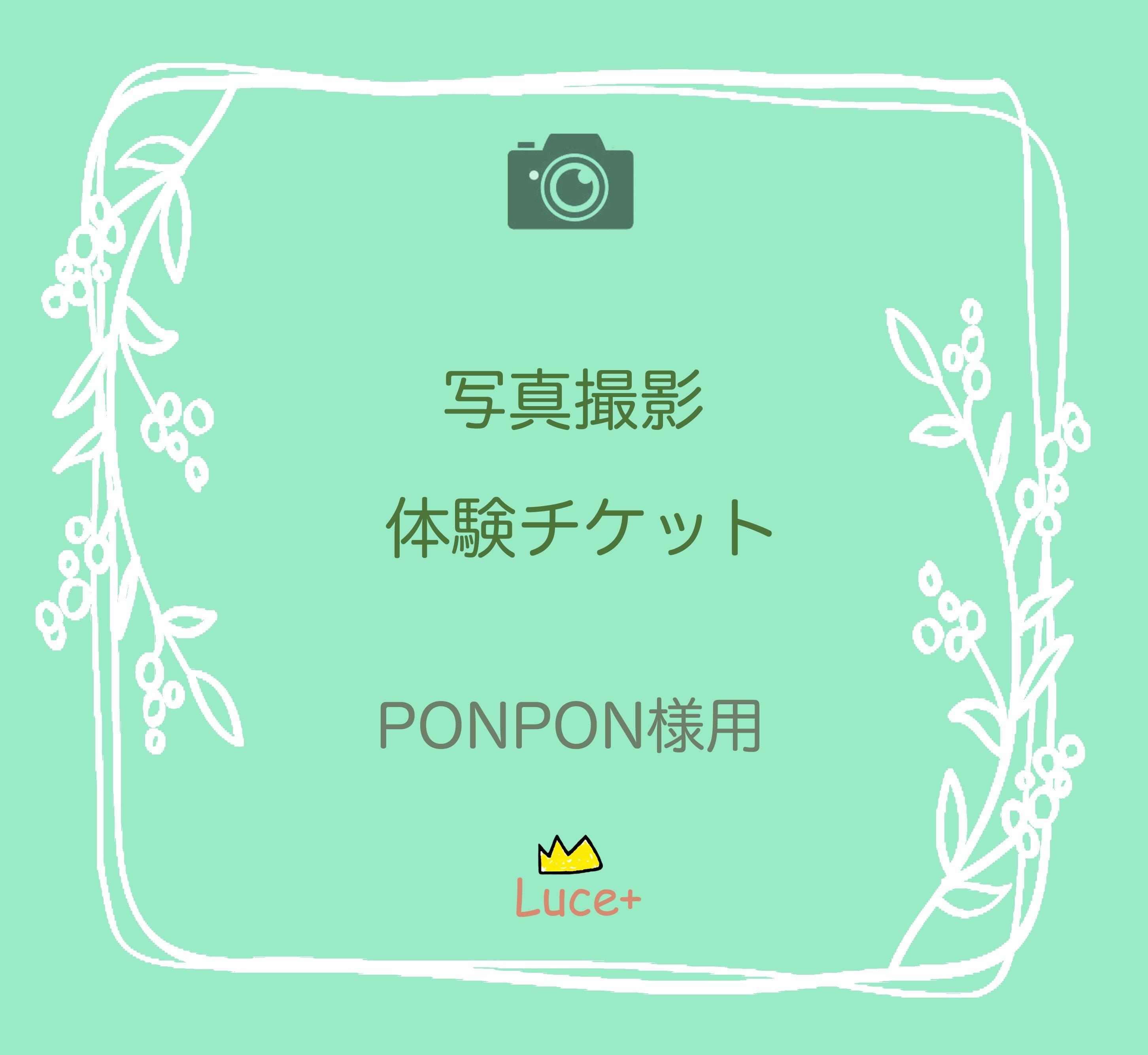 PONPON様用 撮影「1データ」チケットのイメージその1