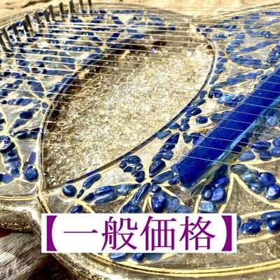 【石垣島(一般価格)】ヴェシカパイシス型24弦オルゴンライアー講座
