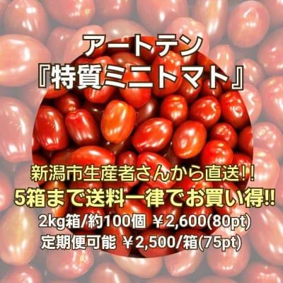 【通年出荷可能】アートテン特質ミニトマト2kg箱(5箱まで送料一律)
