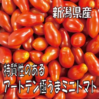 【今食べる事に意味がある】特質性のあるアートテン極うまミニトマト2kg箱 (5箱まで送料一律)
