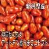 特質性のあるアートテン極うまミニトマト2kg箱 (5箱まで送料一律)